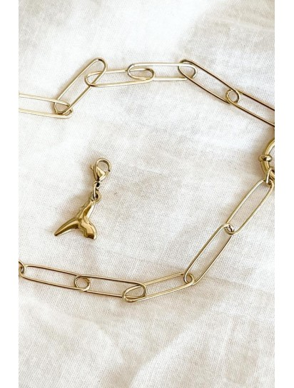 charms requin